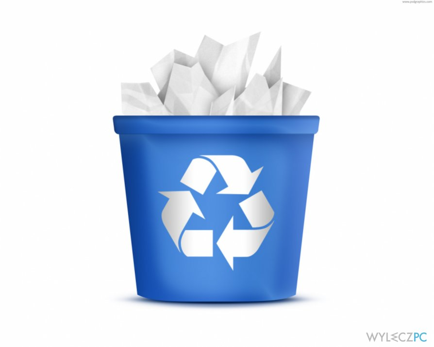 files after emptying Recycle Bin snapshot